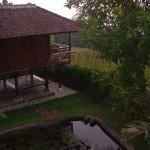Feng-shui des jardins....